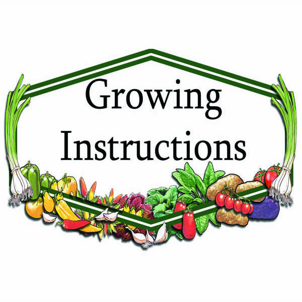 Growing Instructions for Home Gardeners