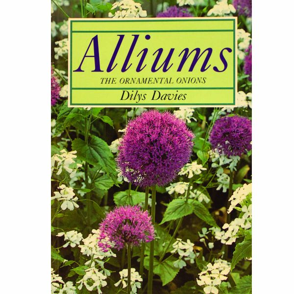 Alliums Ornamental Onions by Dilys Davies