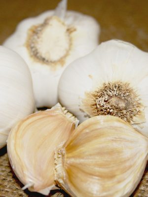 Organic Italian Late Softneck Garlic Bulbs & Seed Garlic